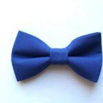 papion albastru dublu