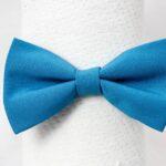 papionminimat-turcoaz-albastru-simplu