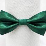 papion-satin-verde-inchis-simplu-21